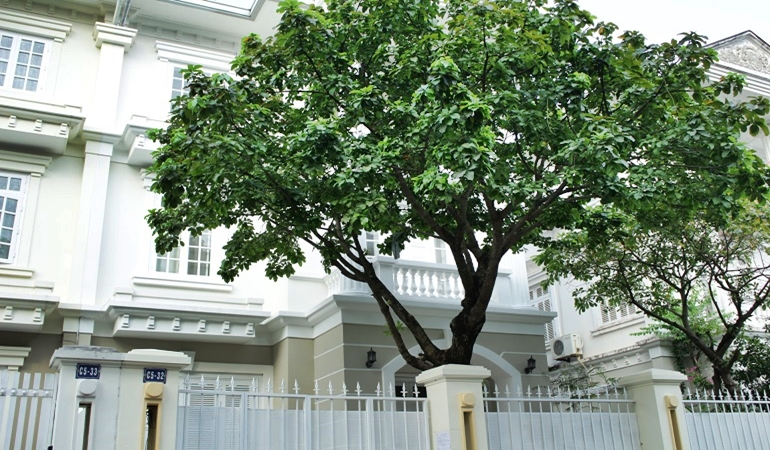Villa in Ciputra Hanoi for rent with 04 bedrooms